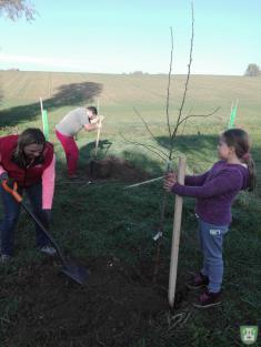 Sázíme stromky pro potomky